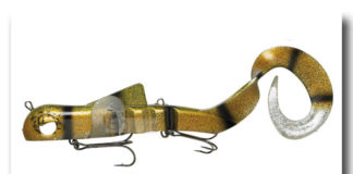 Alien Eel