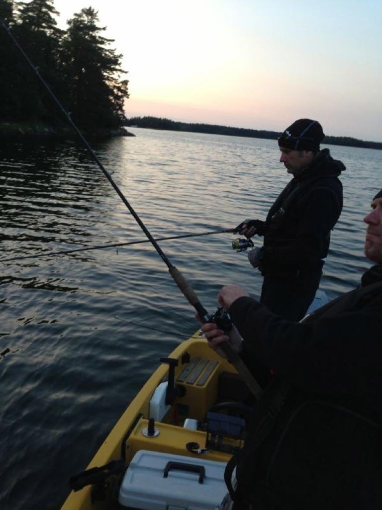 Koncentrerat fiske... Nu tar den snart...