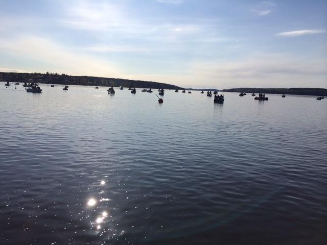 Starten för båtarna Söderut i King Of Mälaren våren 2014