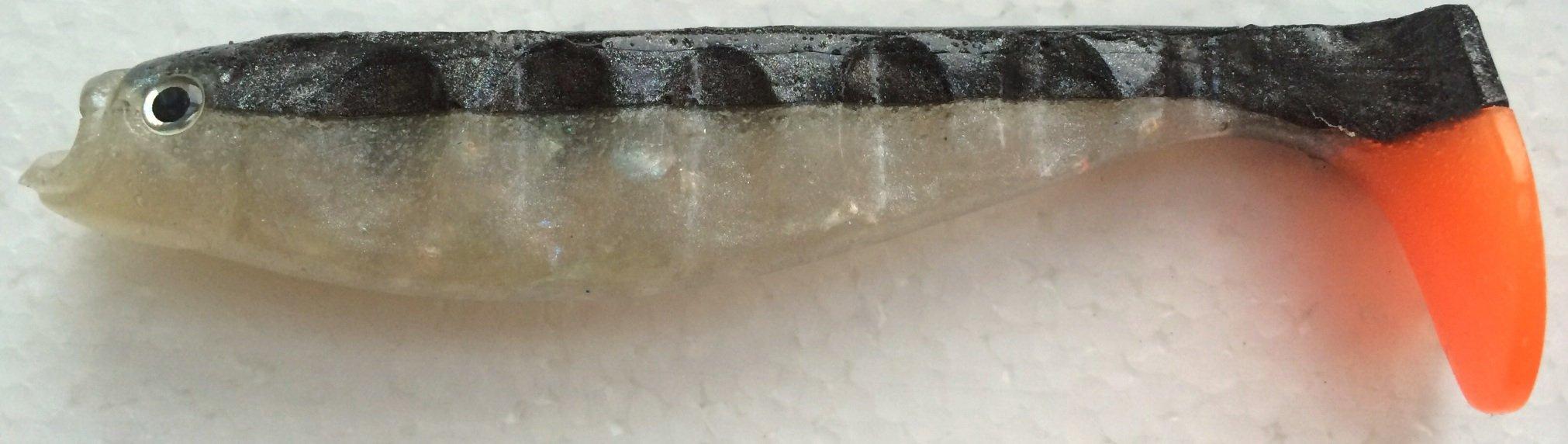 Även en mer kontrastrik svart/pearl här. Jag gillar färgade stjärtar. Kommer även ta med rasselkammare att sticka in för ytterligare attraktion