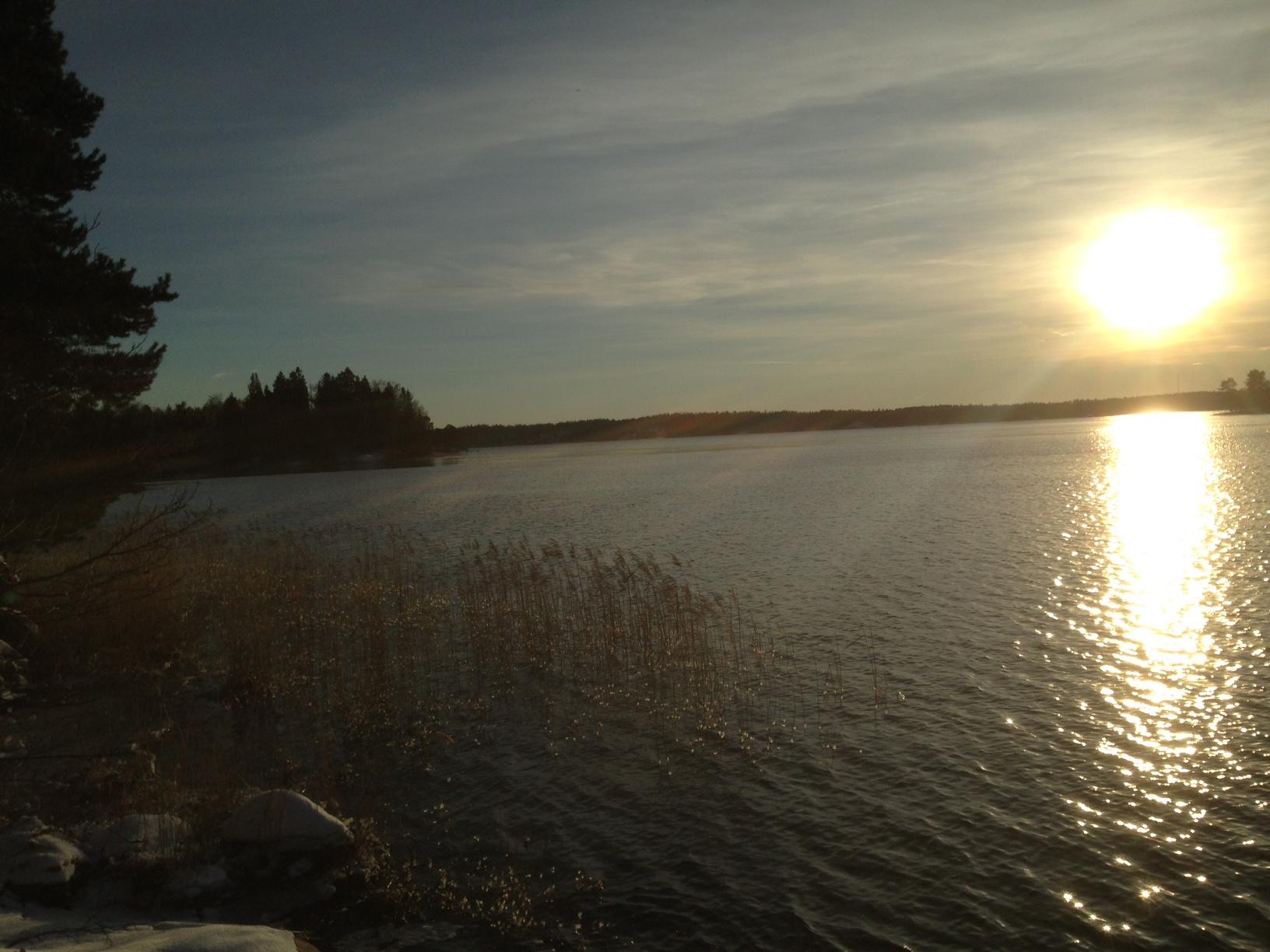 Västerfjärden i Furusund ligger fortfarande isfri, men vasskanterna börjar frysa till