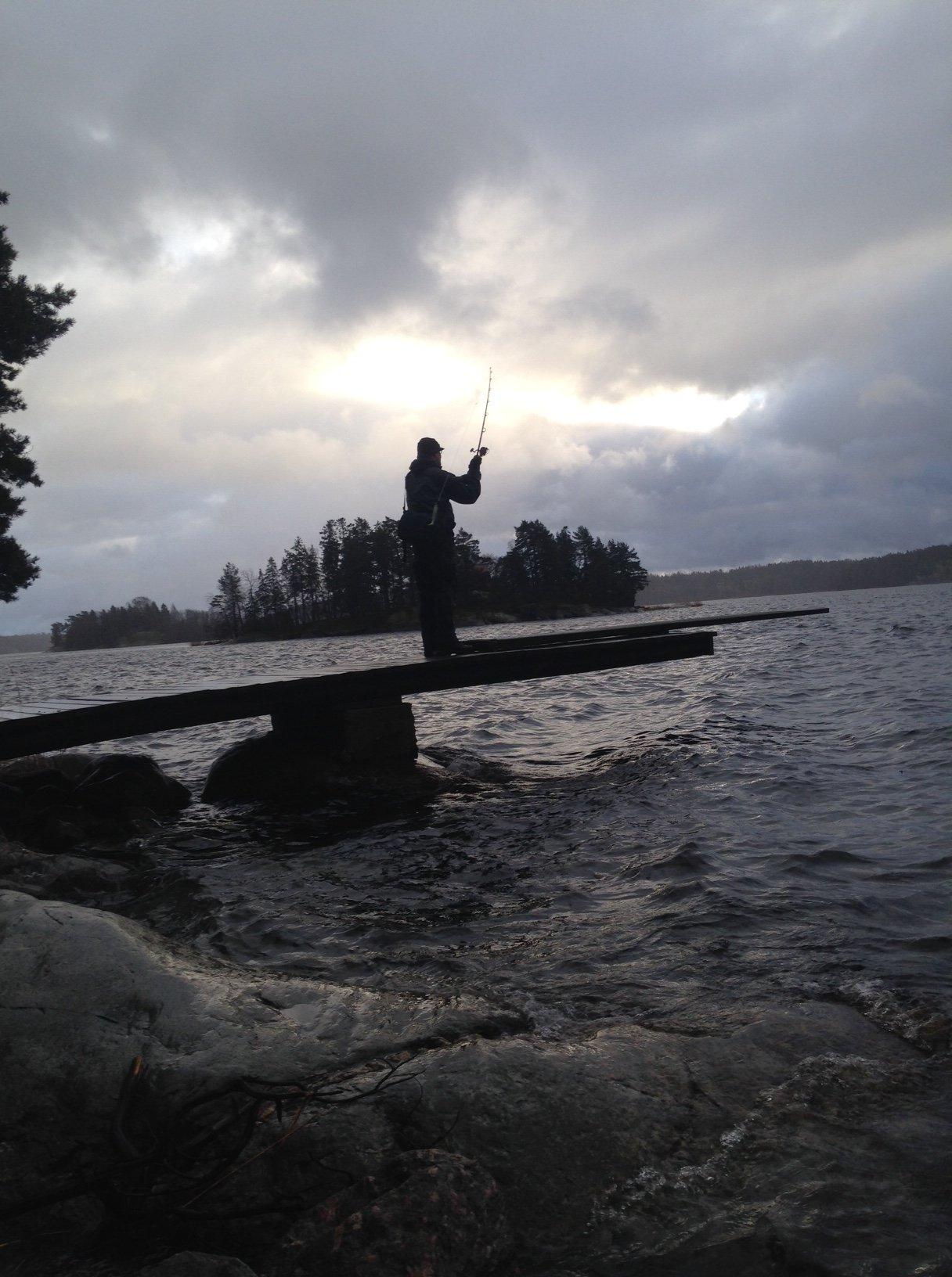 """Fisket från land är en skön avkoppling, sommargästerna har gett sig iväg och det är bara att """"ta över"""" bryggor och stränder:)"""