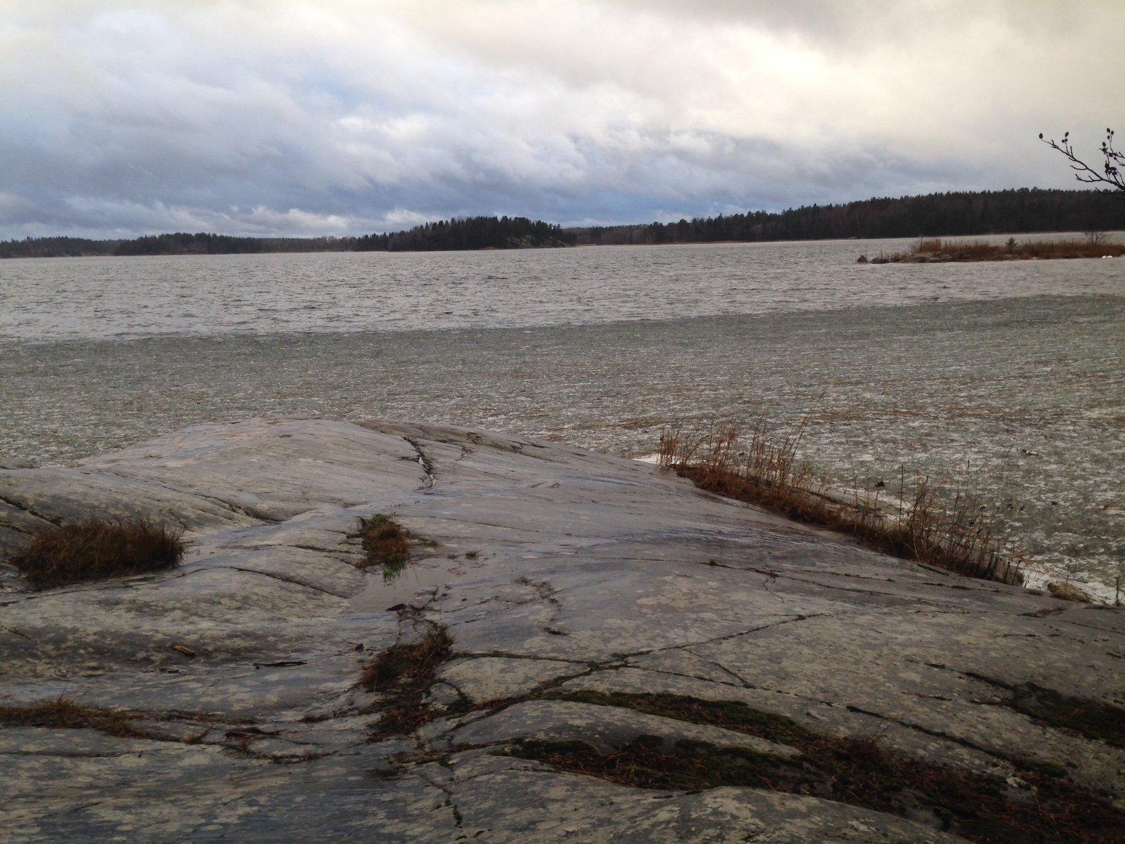 Lisslö i Norrtäljetrakten 2015 - för er som rekar fångstplatser - ibland visar vi heta ställen och iböand som det här - iskallt men extremt många härliga gråa och stålblå nyanser i januari.